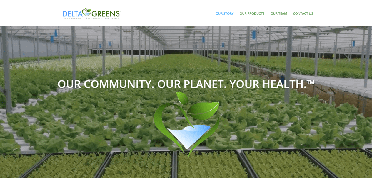Delta Greens designed by Website Design Works Paducah
